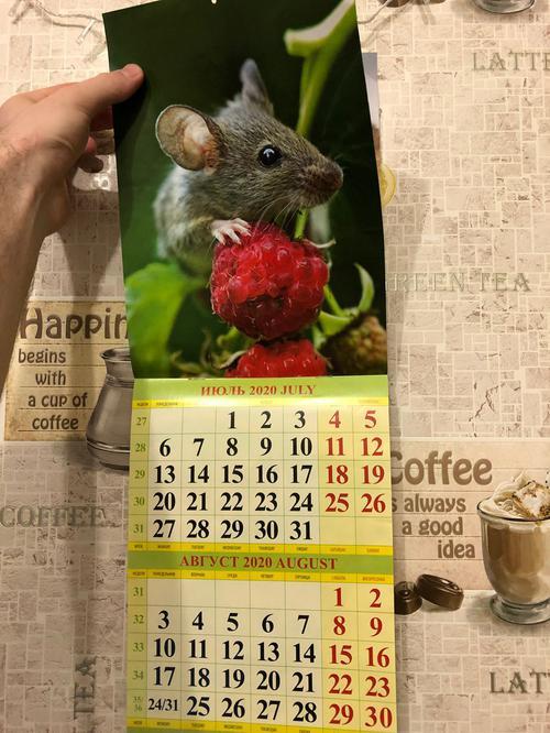 Календарь 2020 год крысы. На стену