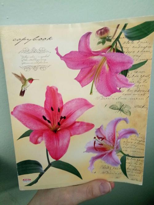 Тетрадь 48 цветы калибри