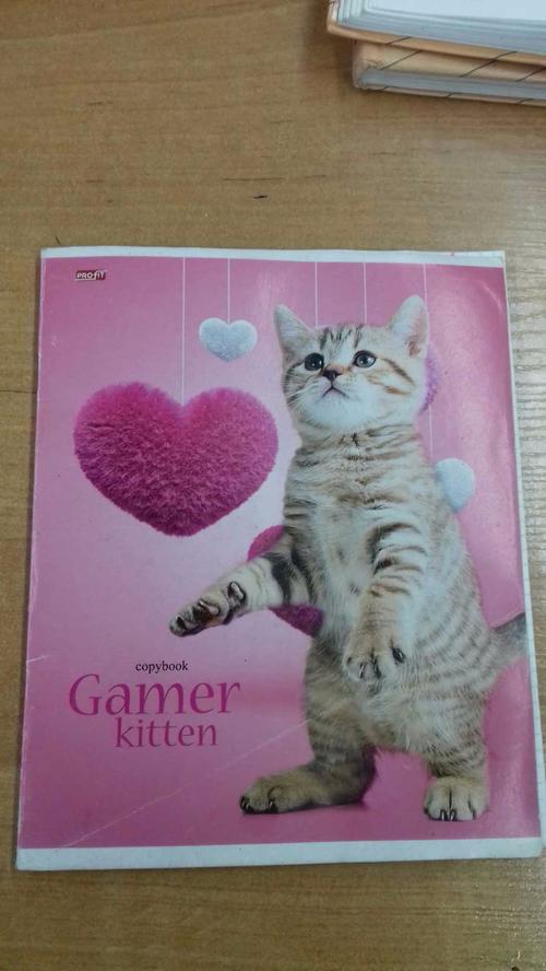 "Тетрадь 48л. ""Животные. Котята с сердечками"""