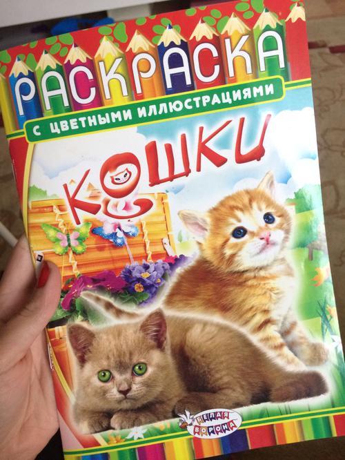 Book (ISBN: 5000434854)