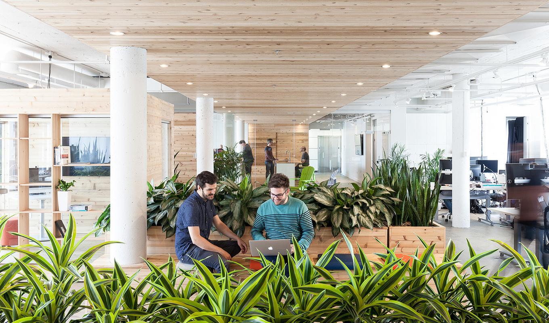 Как сделать офис комфортным для сотрудников: 4 простых совета