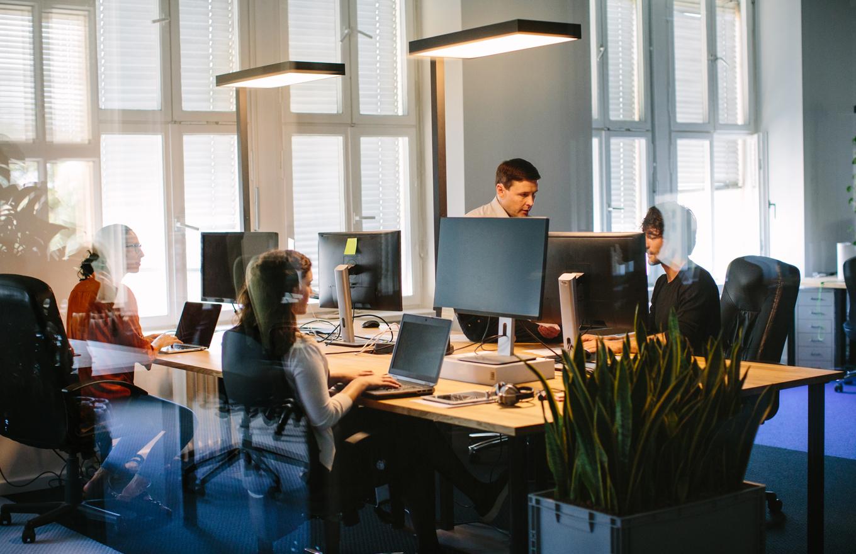 Как управлять небольшой IT-компанией: 10 подсказок