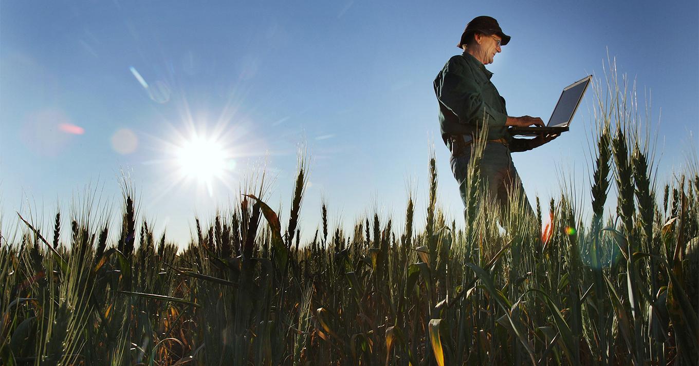 Фермерам приглянулся блокчейн. Чем это кончится?