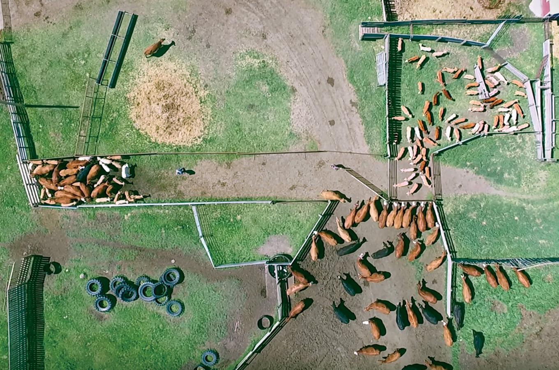 Шахты, ферма и мода: как дроны помогают бизнесу