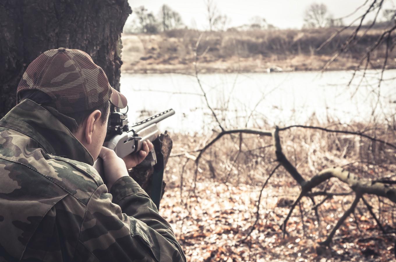 охотники в засаде картинки жизни