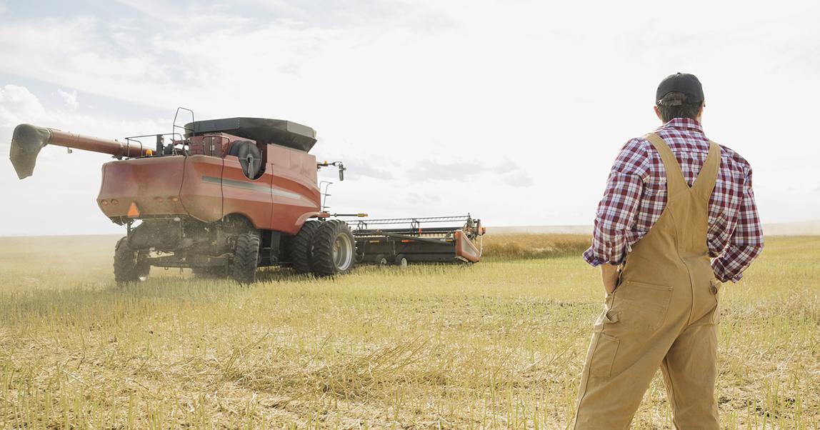 Как застраховать валютный риск (если вы фермер или у вас онлайн-магазин с импортными товарами)