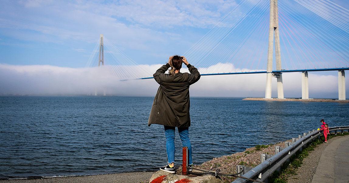 Песочница киборгов: какие стартапы переедут на остров Русский (и смогут ли они превратить его в  новую Кремниевую долину)