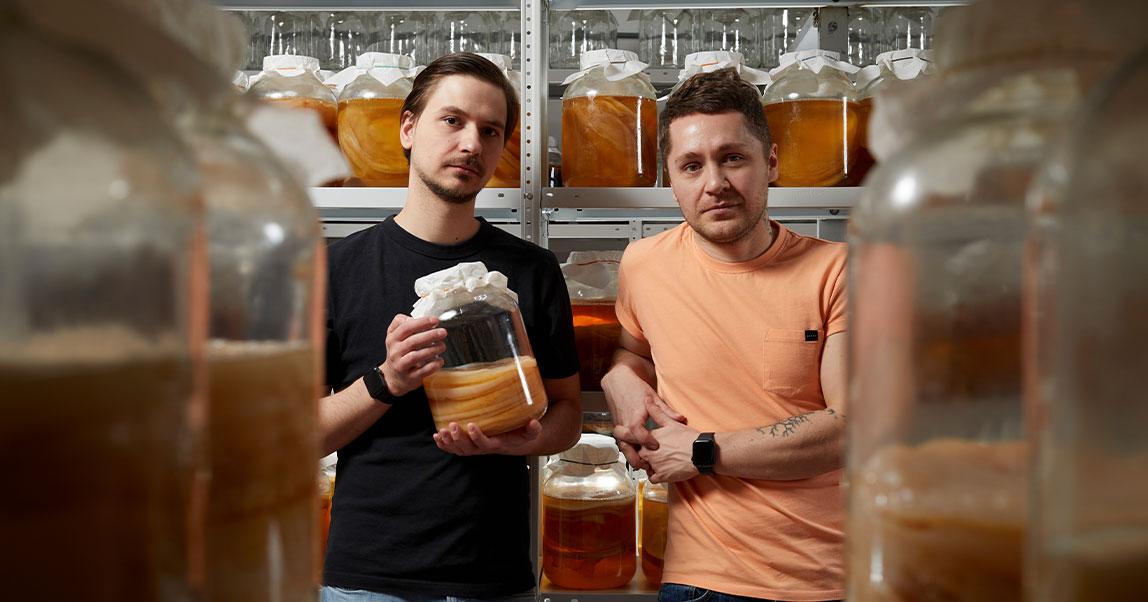 Можно ли в России зарабатывать миллионы на чайном грибе? Двое бывших барменов уверены, что да, и намерены это доказать