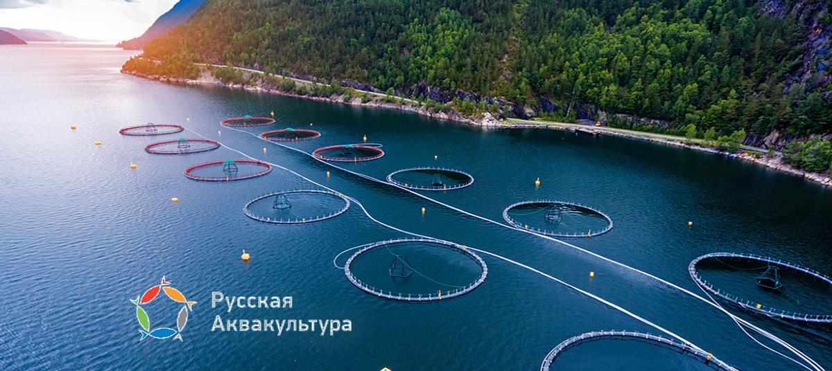 ПАО «Русская аквакультура»
