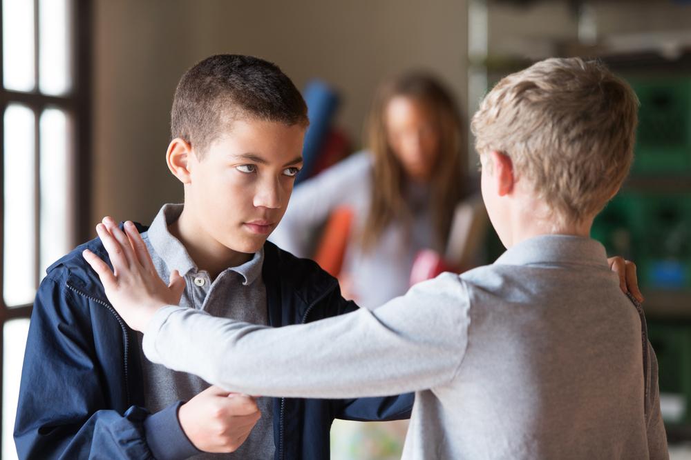 Драка в школе: могут выгнать?
