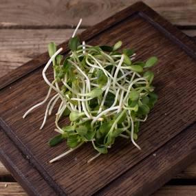Микрозелень подсолнечника ~ 40 г
