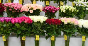 За год цветы в Москве подорожали почти вдвое и к 8 Марта будут еще дороже