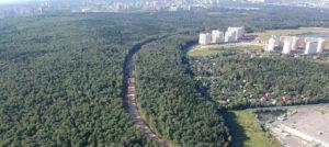 Ульяновскому лесопарку на Юго-Западе Москвы грозит уничтожение сразу двумя дублерами