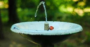 «Не прихоть, а необходимость»: урбанисты призвали возродить питьевые фонтанчики