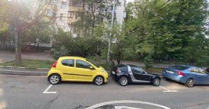 Московские автомобилисты задались вопросом, можно ли в этом случае платить парковку напополам