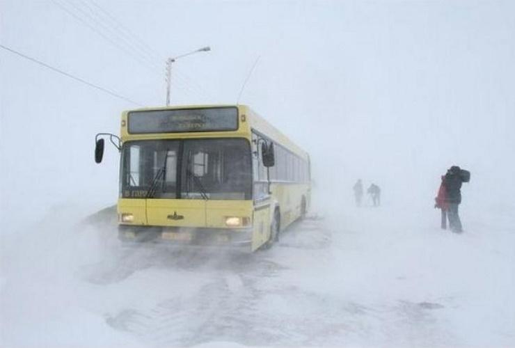 Эхо ЧП с застрявшим автобусом с хоккеистами: лишь одного говоруна уволят, а двоих просто накажут
