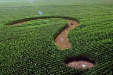 Все, что Вы хотели знать о землях сельхозназначения рядом с водными объектами
