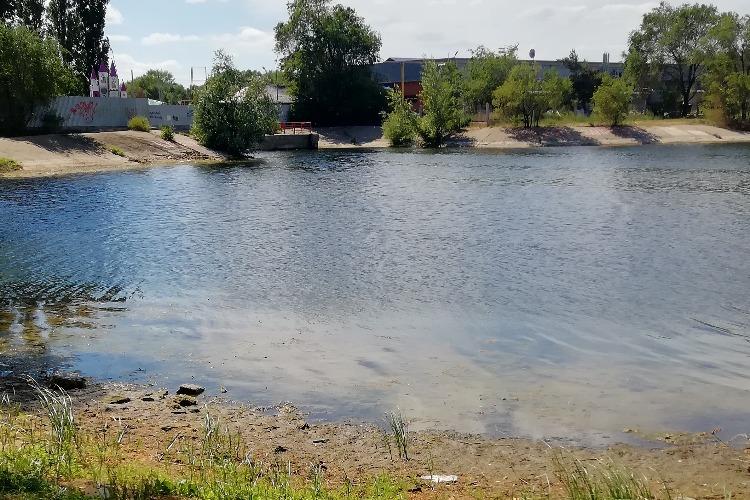 Это не пляж, а болото! Балаковцы недовольны количеством тины и водорослей