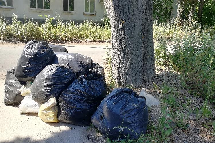 Собранный руками балаковцев мусор никто не вывозит
