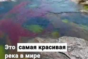 Река Пяти Цветов удивляет своей красотой. Видео