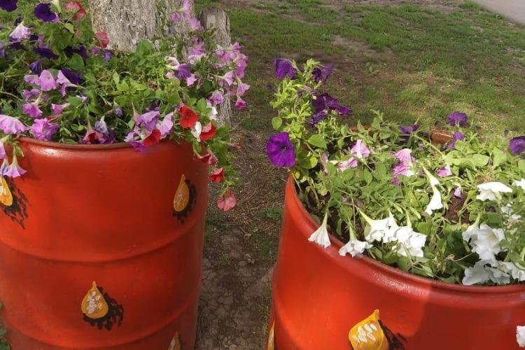 В Балакове вандалы вырвали с корнем 3 фонаря и разорили цветочные клумбы