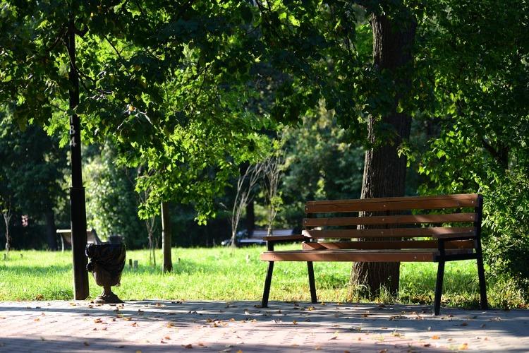 Парк возле ГДК обзаведется бесплатным Wi-Fi и защитой от вандалов