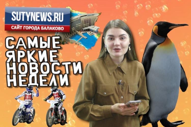 Суть недели. Самые яркие новости от sutynews.ru. Выпуск от 30 августа