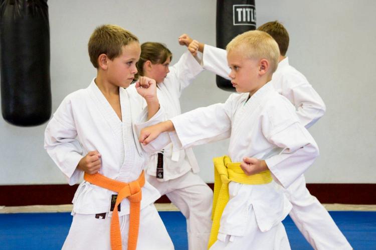 Стали известны призеры прошедшего турнира по карате