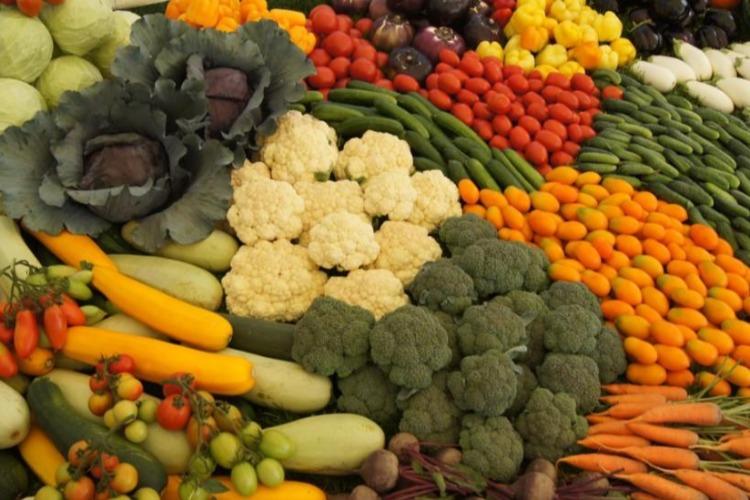 Первая осенняя ярмарка сельхозпродукции пройдет уже завтра