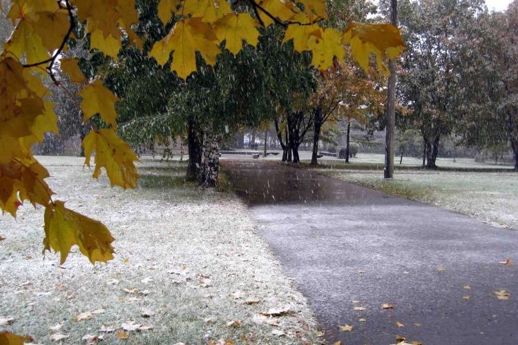 Тепла не ждите. В Саратовской области на следующей неделе выпадет снег