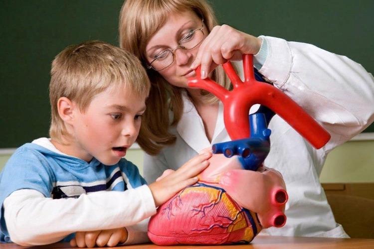 Жизнь-то налаживается! Новые миллиарды пойдут врачам, учителям и дошколятам