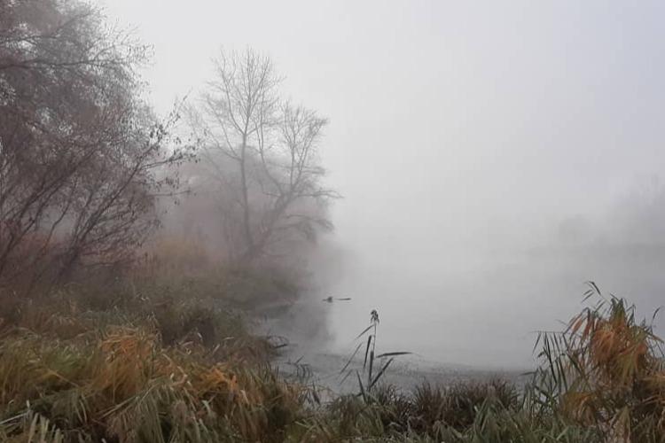 Погода в Балакове 7 ноября