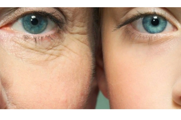 """ТЕСТ: Глаза – зеркало души. Сумеете """"опознать"""" известных людей по глазам?"""
