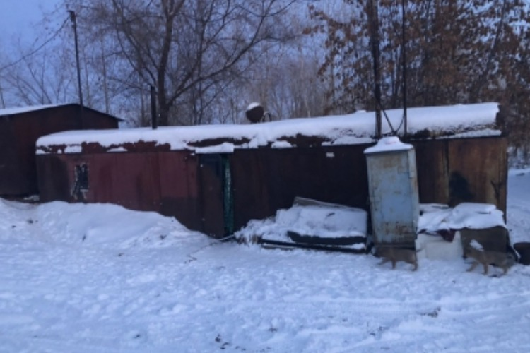 В гаражном кооперативе найдено тело мужчины