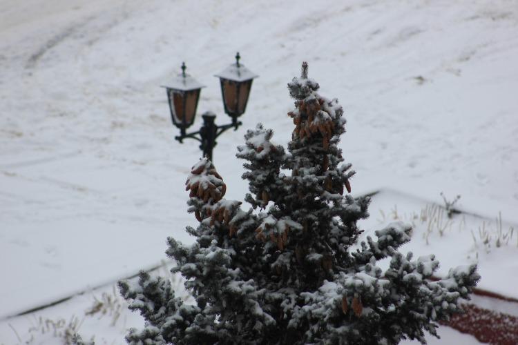 Погода в Балакове 13 января