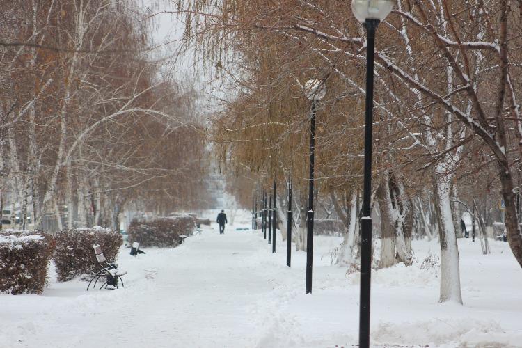 Александр Соловьев: В Балакове не хватает дворников