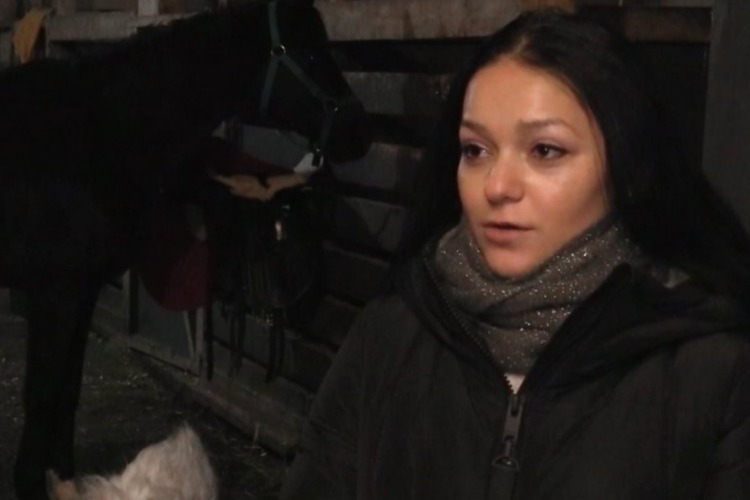 Она спасла от скотобойни более 400 лошадей. Видео