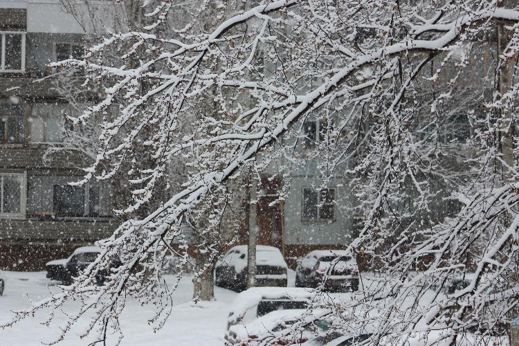Сегодня - самый красивый день зимы. Наш фоторепортаж