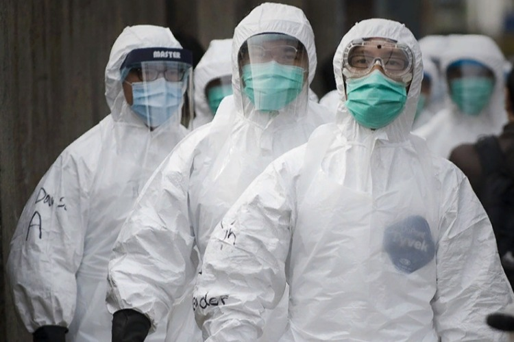 Откуда берутся новые вирусы? Стыдные вопросы о глобальных эпидемиях