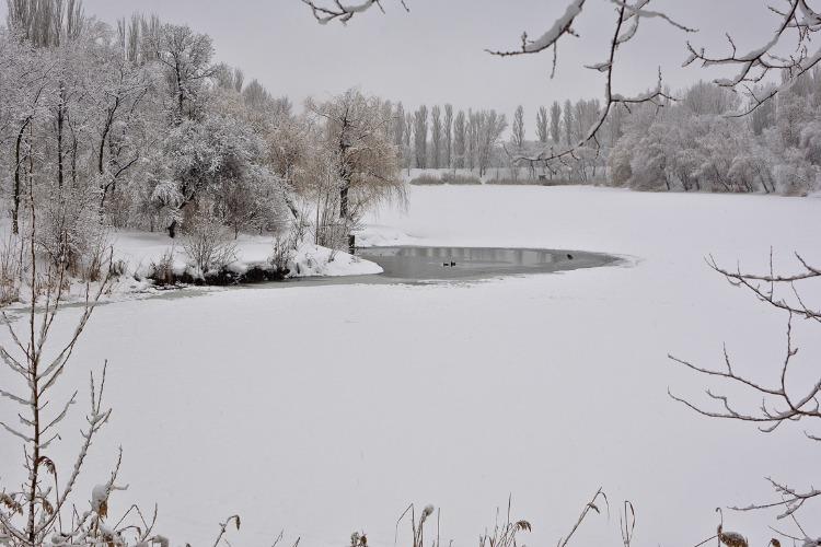 Погода в Балакове 14 февраля