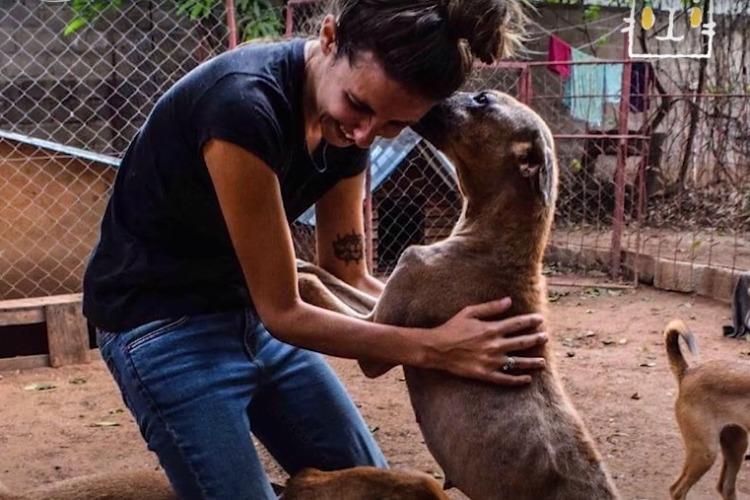 Девушка спасает собак по всему миру. Видео