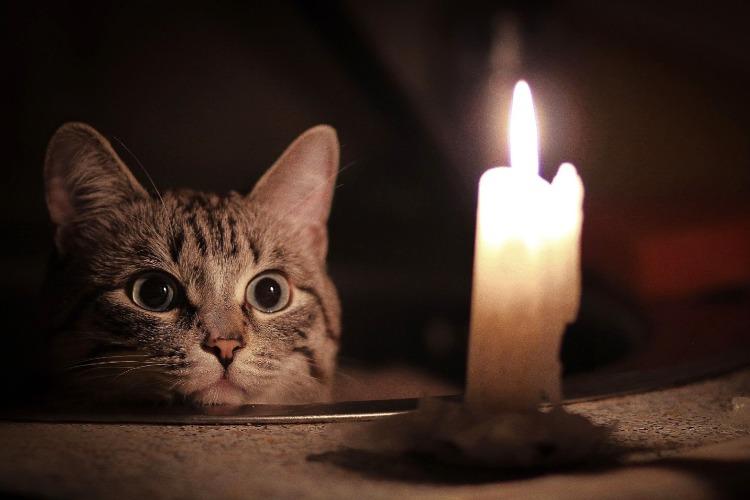 Завтра часть жителей Балакова останется без света. Список адресов
