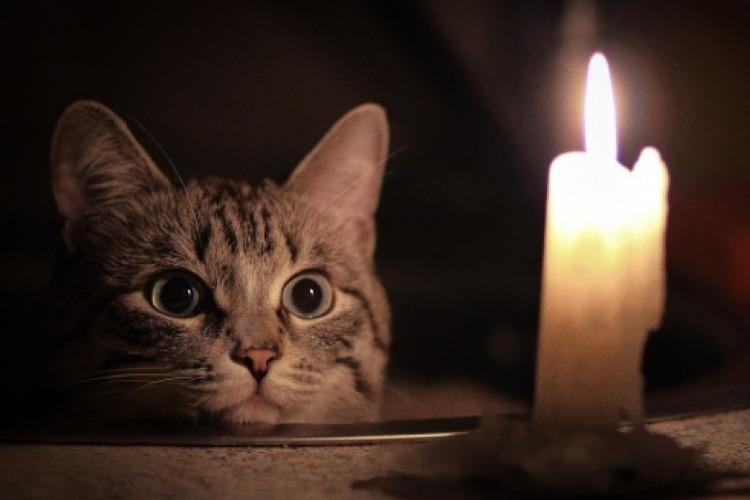 Завтра в Балакове вновь отключат свет. Список адресов