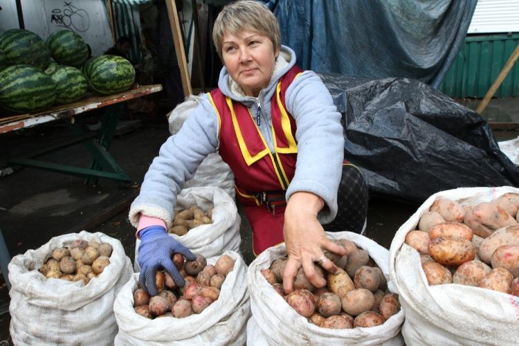 Под окнами балаковской администрации будут торговать овощами