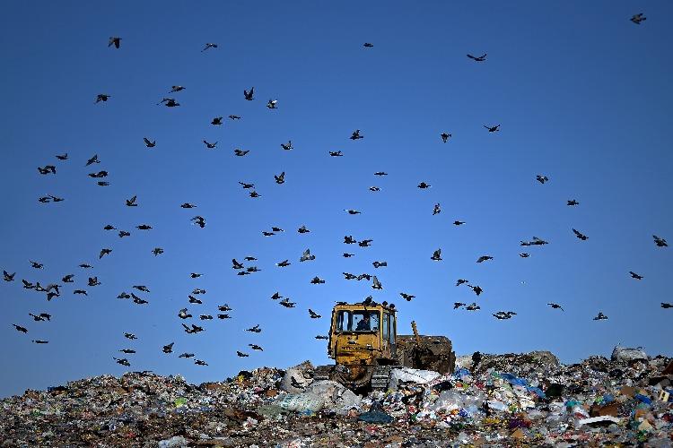 Шик регоператоров и пшик мусорной реформы