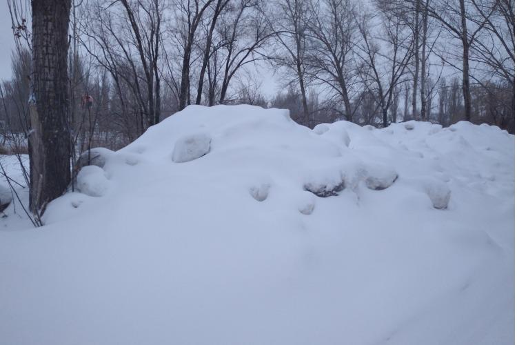 В Балакове неизвестные организовали снежную свалку у водоема