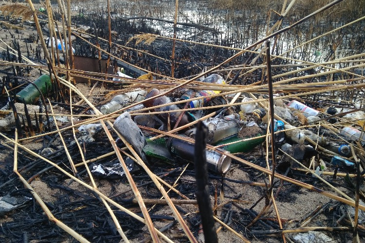 В Балаково у пляжа 7 микрорайона пожар прибрежного камыша оголил жуткую свалку
