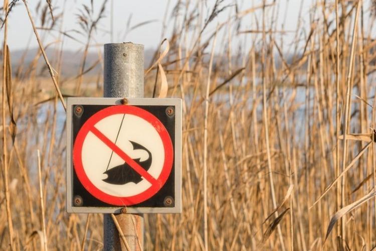 Внимание, рыбак! На Волге введен нерестовый запрет