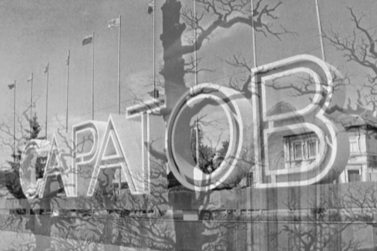 Саратовская область вышла на первое место в России по динамике смертности