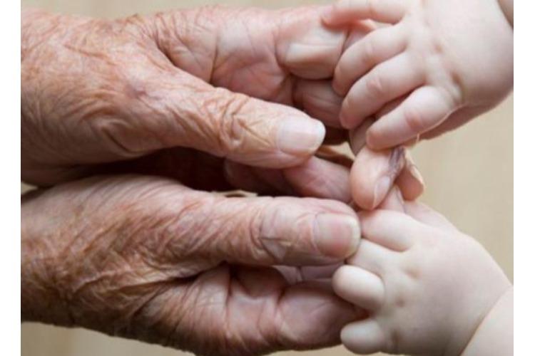 Смертность в области падает, рождаемость растет - жизнь налаживается?
